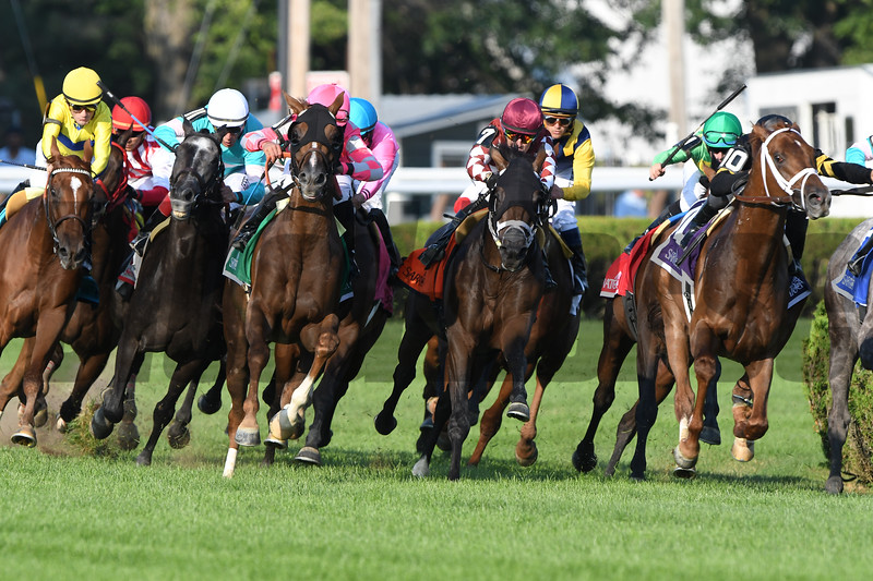 Casa Creed wins the 2019 National Museum of Racing Hall of Fame Stakes<br /> Coglianese Photos/Elsa Lorieul