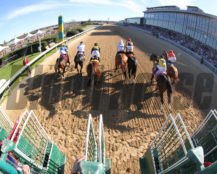 Starting Gate Remote The Rebel (GII) March 16, 2019 Oaklawn Park Chad B. Harmon