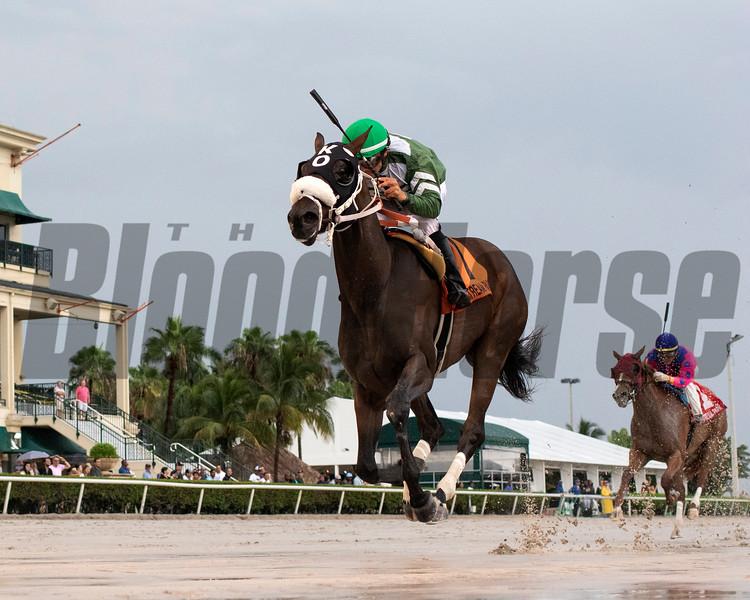 Lenzi's Lucky Lady wins the 2019 FTBOA Florida Sire Desert Vixen Stakes<br /> Coglianese Photos/Ryan Thompson