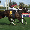 Baffin Bay wins the 2019 Bellerophon Stakes at Gulfstream Park<br /> Coglianese Photos/Leslie Martin