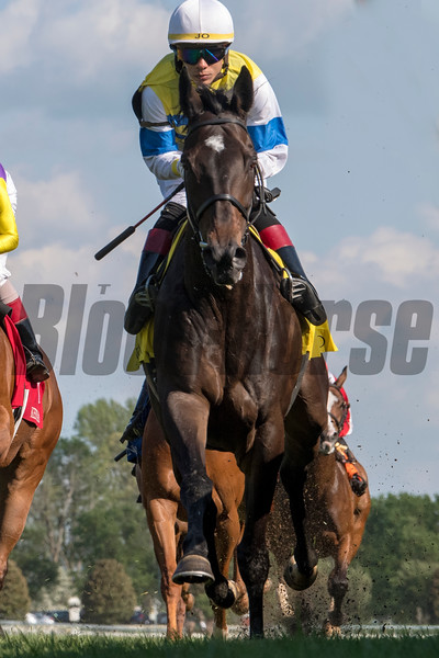 Ickymasho with Jose Ortiz up wins the Bewitch for trainer Roger Attfield and owner Triton Stable, Lincoln Collins, 2019 Keeneland Spring Meet