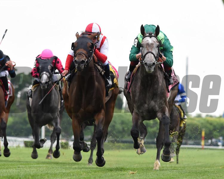 Homerique wins the 2019 New York Stakes at Gulfstream Park<br /> Coglianese Photos/Derbe Glass
