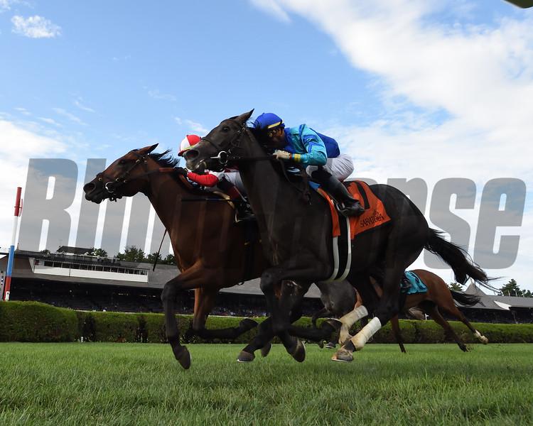 Catch a Bid wins the 2019 Riskaverse Stakes at Saratoga <br /> Coglianese Photos