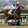 Always Shopping wins the 2019 Gazelle Stakes at Aqueduct<br /> Coglianese Photos