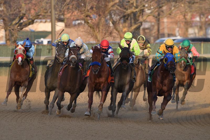 Honor Up wins the 2019 Say Florida Sandy Stakes at Aqueduct<br /> Coglianese Photos/Robert Mauhar