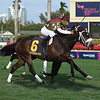 Baffin Bay wins the 2019 Bellerophon Stakes at Gulfstream Park<br /> Coglianese Photos/Derbe Glass