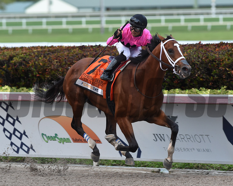 Maximum Security  wins the 2019 Florida Derby<br /> Coglianese Photos