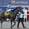 Jeltrin wins the 2019 Davona Dale Stakes at Gulfstream Park<br /> Coglianese Photos/Lauren King