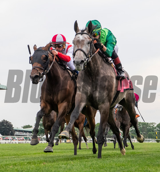 Homerique with jockey Irad Ortiz Jr. wins thew 76th running of The New York (GII) at Belmont Park in Elmont, N.Y. June 7, 2019.  Photo by Skip Dickstein/Tim Lanahan