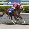 Tapability - Maiden Win, Gulfstream Park, September 14, 2019<br /> Tapit - Groupie Doll<br /> Coglianese Photos/Ryan Thompson
