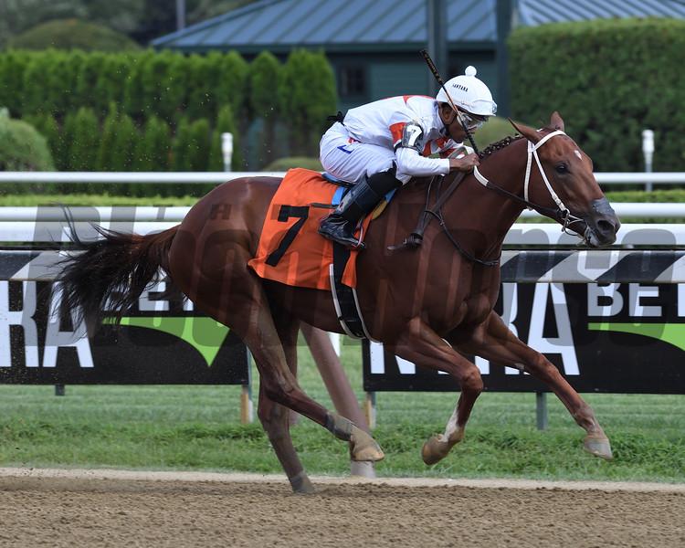 Tumbling Sky - Maiden Win, Saratoga, August 10, 2019<br /> Coglianese Photos