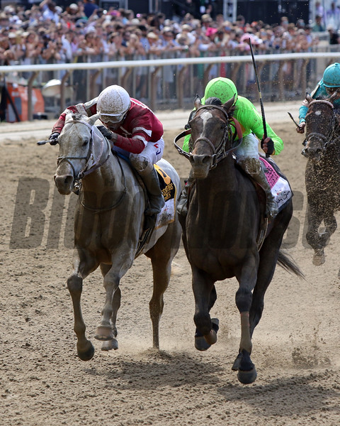 Hog Creek Hustle with Corey Lanerie win the 35th Running of the Woody Stephens (GI) at Belmont Park on June 8, 2019 over Nitrous with Ricardo Santana Jr. Photo By: Chad B. Harmon