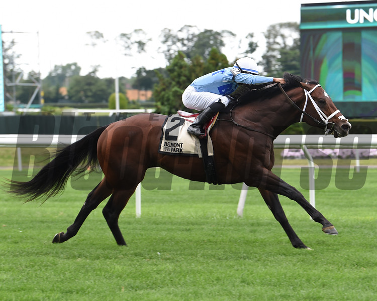 Uncle Benny wins the 2019 Allied Forces Stakes<br /> Coglianese Photos