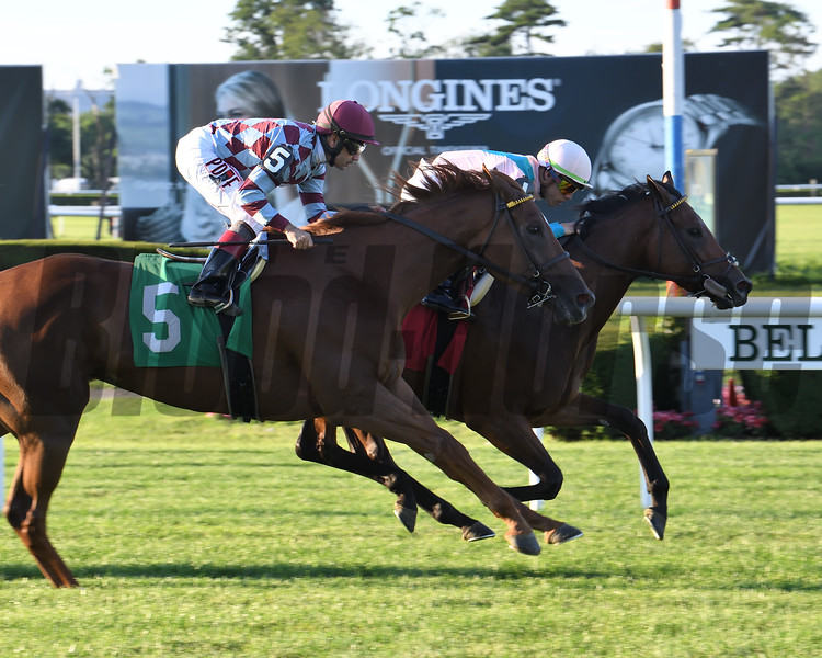 Lady Worthington - Maiden Win, Belmont Park, June 27, 2019<br /> Coglianese Photos