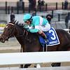 Mind Control wins the 2019 Jerome Stakes at Aqueduct<br /> Coglianese Photos/Joe Labozzetta