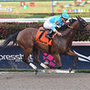Blamed wins the 2019 Royal Delta Stakes at Gulfstream Park<br /> Coglianese Photos/Leslie Martin