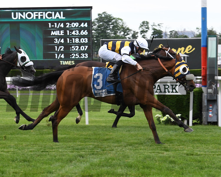 Amade wins the 2019 Belmont Gold Cup Invitational<br /> Coglianese Photos