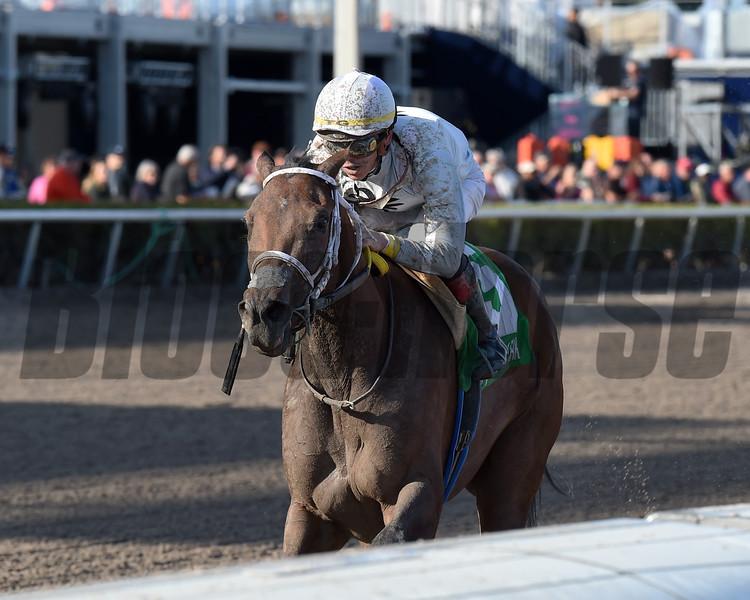 Misschief Maas wins the 2019 Eos Stakes at Gulfstream Park<br /> Coglianese Photos/Lauren King