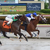 Captain D - Maiden Win, Gulfstream Park, August 4, 2019<br /> Coglianese Photos/Lauren King