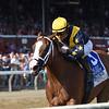 Covfefe wins the 2019  Longines Test Stakes at Saratoga<br /> Coglianese Photos/Adam Moshian