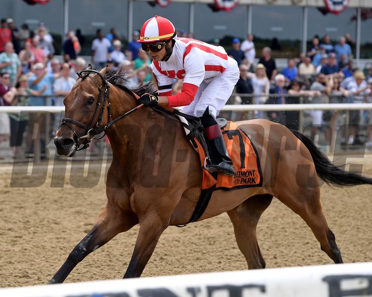 Separationofpowers wins the 2019 Bed o' Roses Invitational Stakes at Belmont Park<br /> Coglianese Photos/Joe Labozzetta
