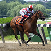 Separationofpowers wins the 2019 Bed o' Roses Invitational Stakes at Belmont Park<br /> Coglianese Photos