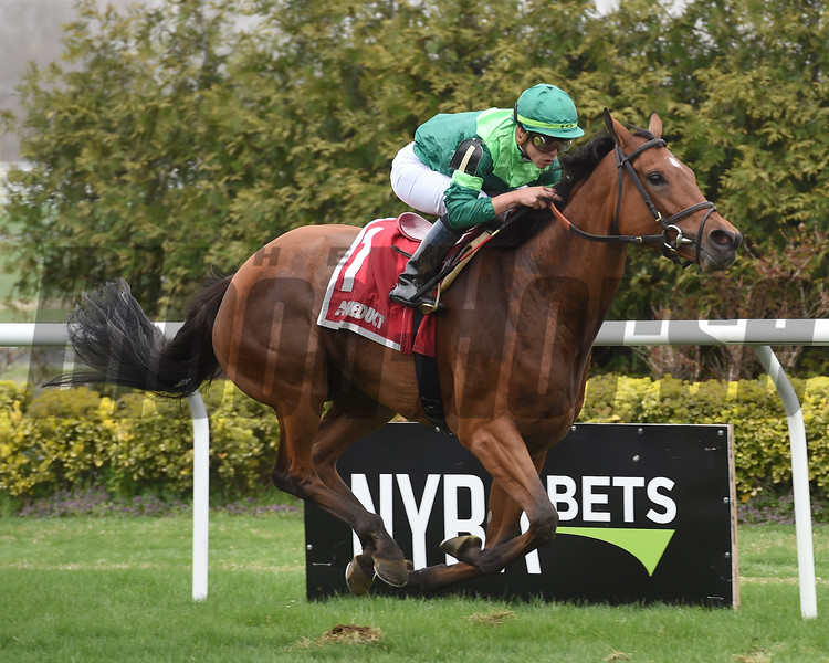 Fifty Five wins the Plenty of Grace Stakes Sunday, April 14, 2019 at Aqueduct. Photo: Coglianese Photos/Elsa Lorieul