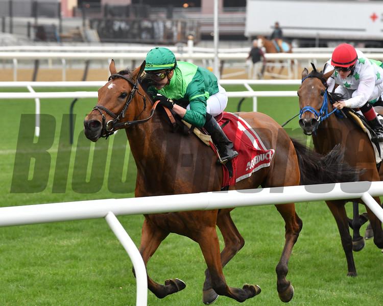 Fifty Five wins the Plenty of Grace Stakes Sunday, April 14, 2019 at Aqueduct. Photo: Coglianese Photos/Joe Labozzetta