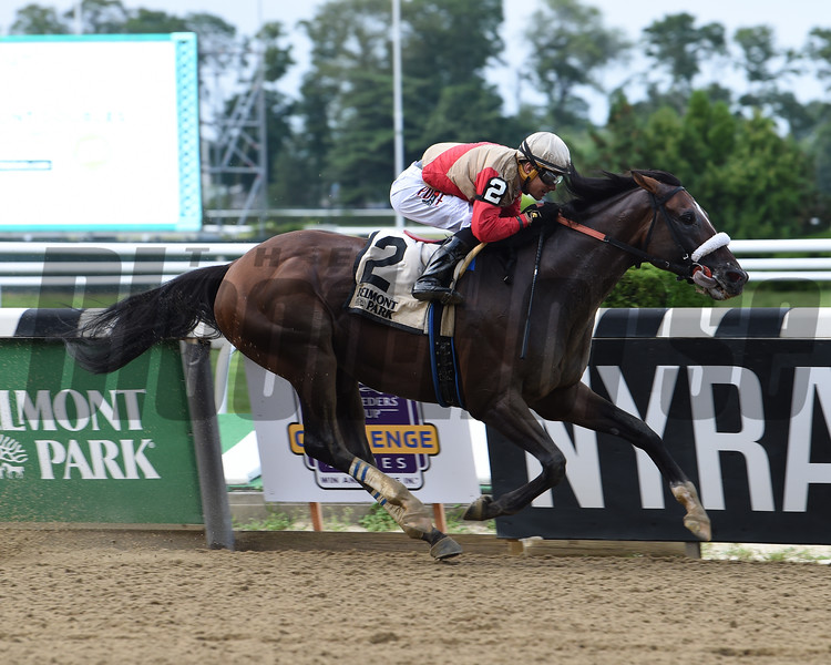 Preservationist wins the Suburban Stakes Saturday, July 6, 2019 at Belmont Park. Photo: Coglianese Photos/Janet Garaguso