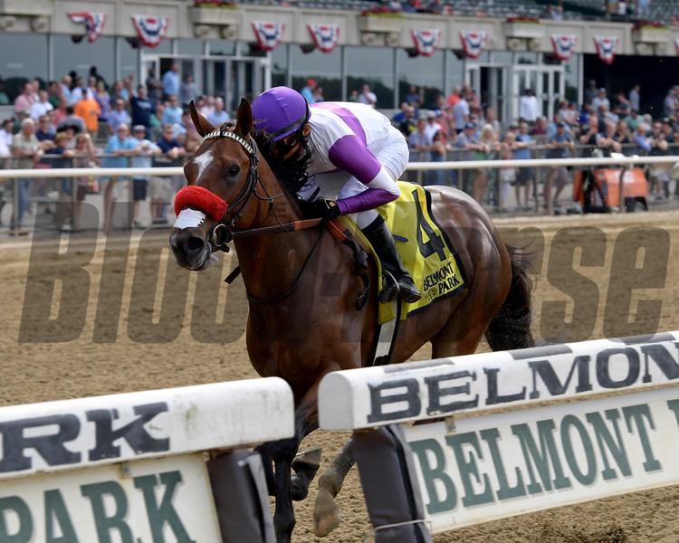 Fore Left wins the 2019 Tremont Stakes at Belmont Park<br /> Coglianese Photos/Joe Labozzetta