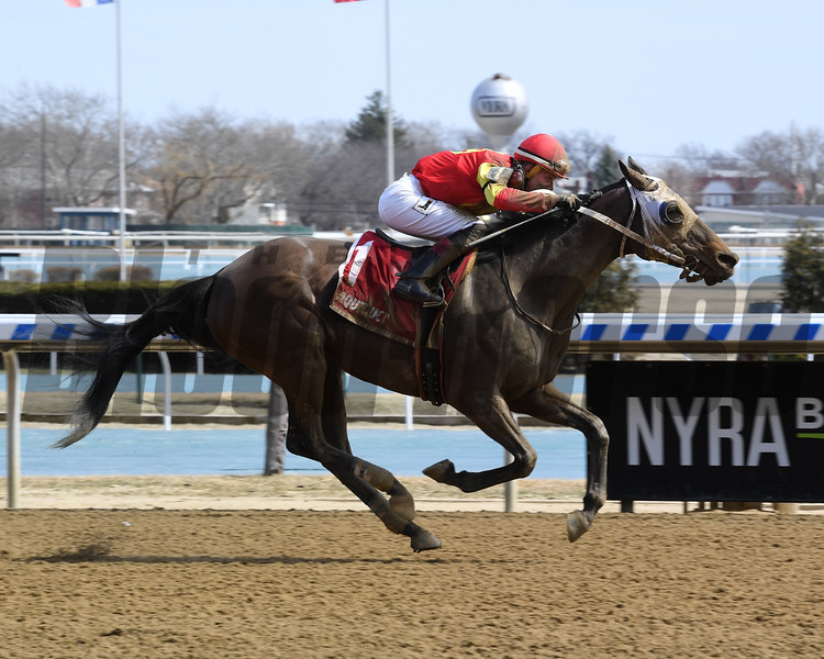 Not About the Nail wins the 2019 Belle Gallantey Stakes at Aqueduct<br /> Coglianese Photos/Chelsea Durand