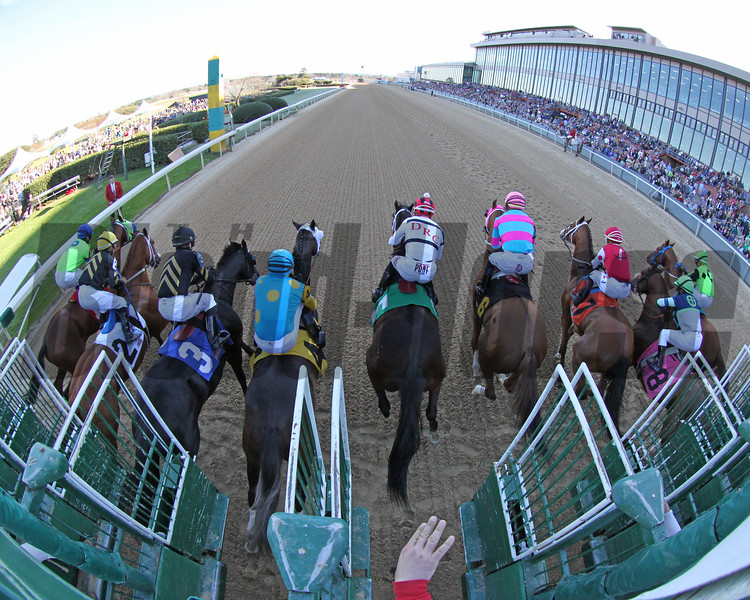 Starting Gate Remote The Essex Handicap (Listed) March 16, 2019 Oaklawn Park Chad B. Harmon