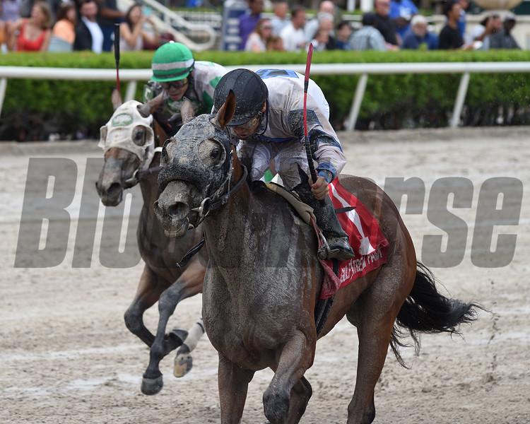 Itsmyluckycharm wins the 2019 Azalea Stakes at Gulfstream Park<br /> Coglianese Photos/Ryan Thompson