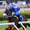 Rinaldi wins the 2019 New York Stallion Stakes at Saratoga<br /> Coglianese Photos/Chelsea Durand