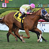 Samara wins the 2019 Captiva Island at Gulfstream Park<br /> Coglianese Photos/Lauren King