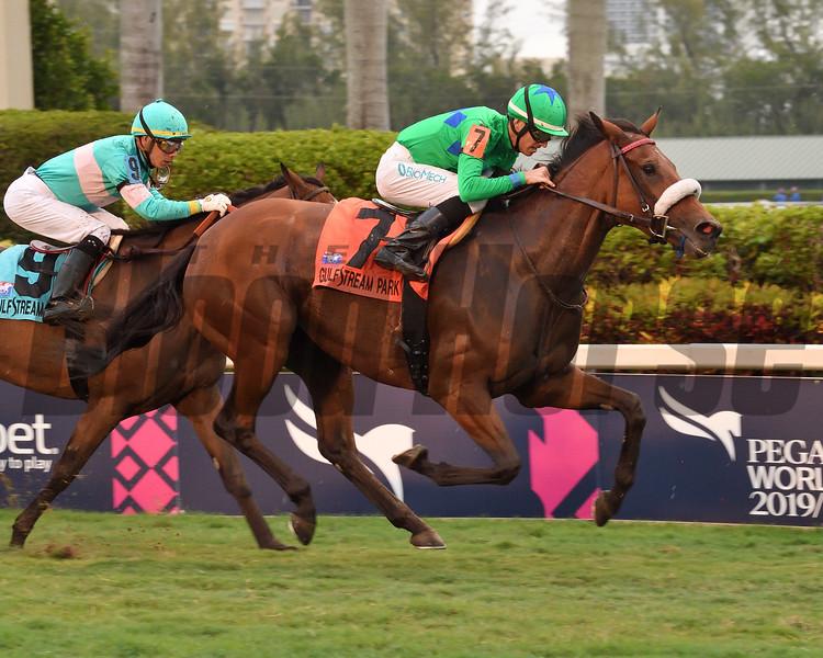 Si Que Es Buena wins the 2019 La Prevoyante Stakes at Gulfstream Park<br /> Coglianese Photos/Susie Raisher