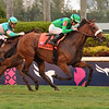 Si Que Es Buena wins the 2019 La Prevoyante Stakes at Gulfstream Park<br /> Coglianese Photos/Susie Raisher