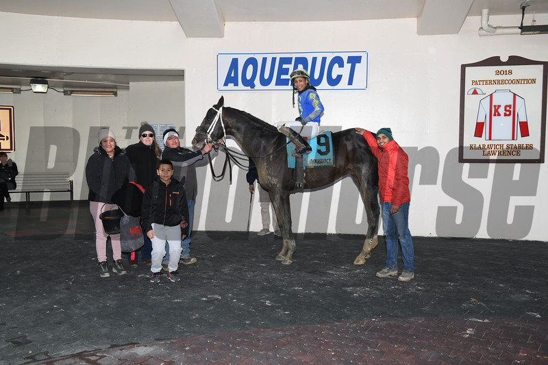Honor Up wins the 2019 Say Florida Sandy Stakes at Aqueduct<br /> Coglianese Photos