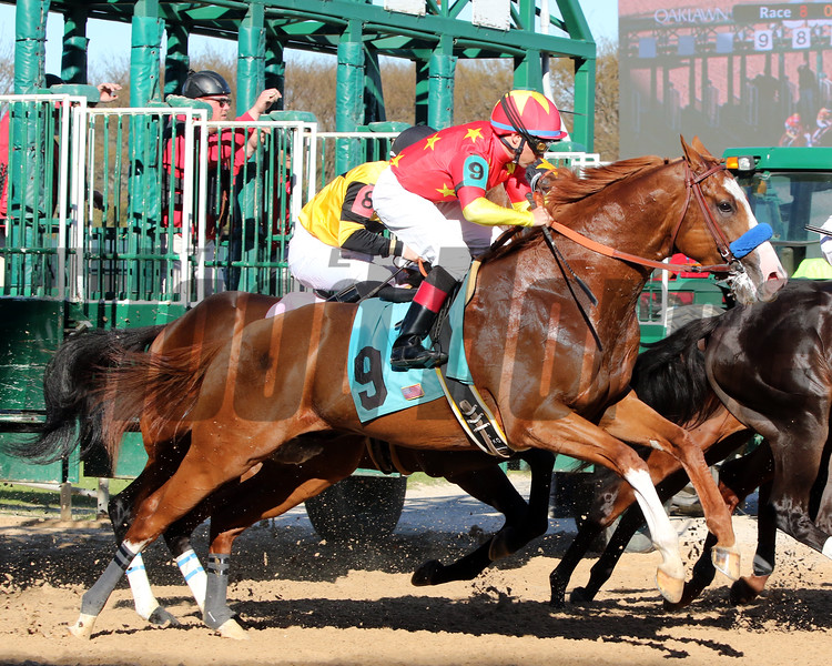 Improbable with Drayden Van Dyke The Rebel (GII) (1st Divison) Oaklawn Park March 16, 2019 Photo by: Chad B. Harmon