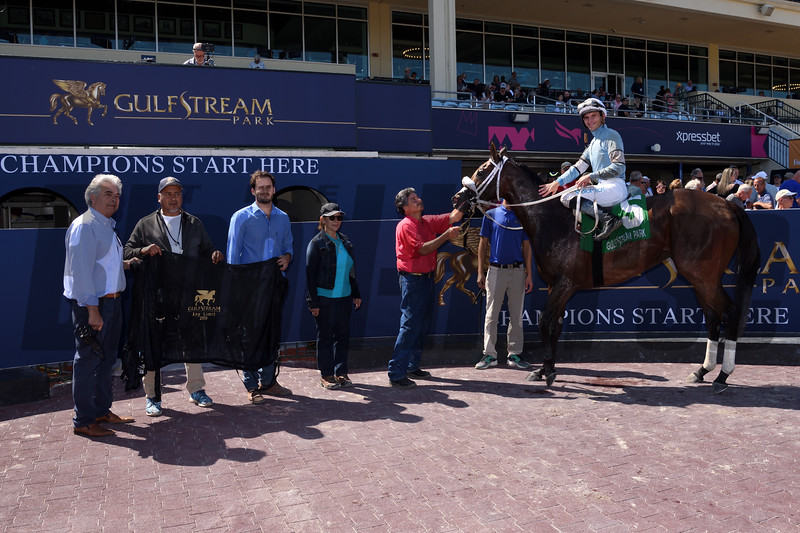 Brunette Princess and Miss Marcela deadheat in the 2019 Any Limit Stakes at Gulfstream Park - Brunette Princess WC<br /> Coglianese Photos