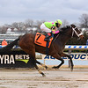 Forever Liesl wins the Ladies Handicap at Aqueduct Sunday, January 20, 2019. Coglianese Photos/Chelsea Durand