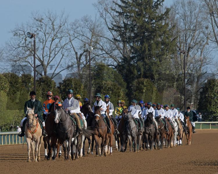 parade of Blue Grass horses.