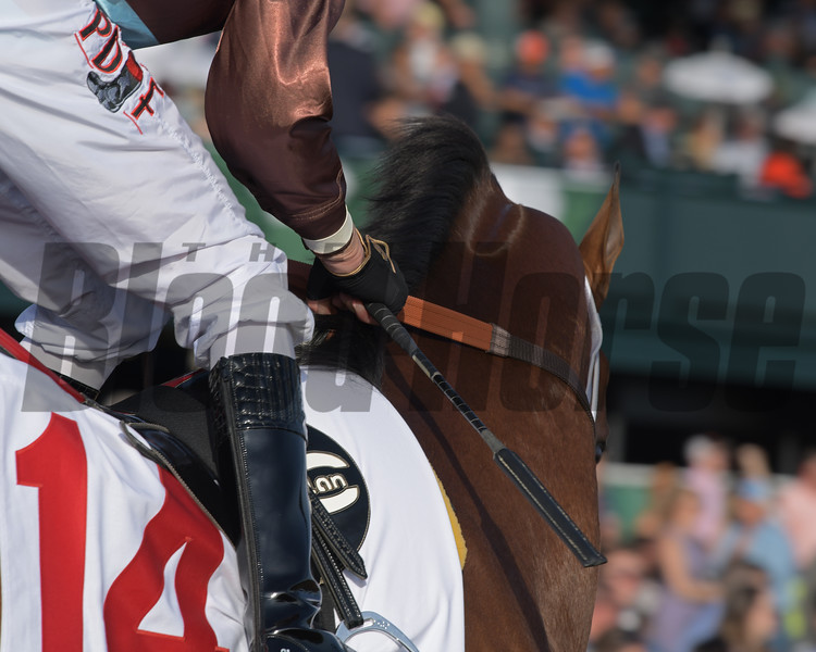 new whip 360 GT used by jocks at Keeneland with Corey Lanerie on Aquadini