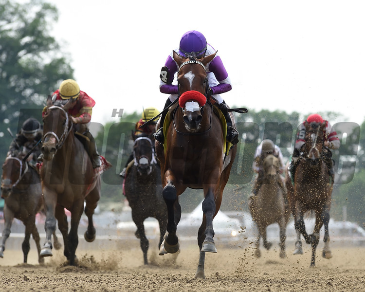 Fore Left wins the 2019 Tremont Stakes at Belmont Park<br /> Coglianese Photos
