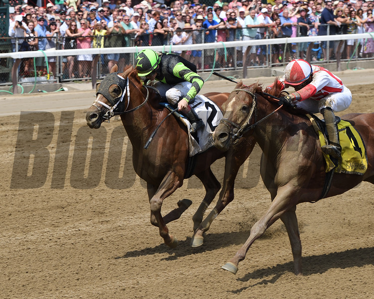Celtic Chaos wins the 2019 John Morrissey Stakes at Saratoga. Photo: Coglianese Photos/Chelase Durand