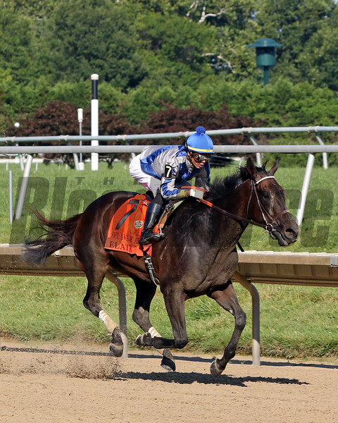 Elate with Jose Ortiz win the 82nd Running of the Delaware Handicap (GII) at Delware Park on July 13, 2019. Photo By: Chad B. Harmon