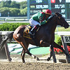 Blindwillie McTell wins the Mike Lee Stakes Monday, May 27, 2019 at Belmont Park. Photo: Coglianese Photos