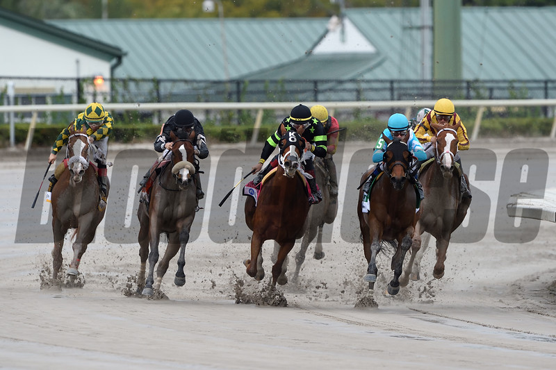 Dream Pauline wins the 2019 Hurricane Bertie Stakes at Gulfstream Park<br /> Coglianese Photos