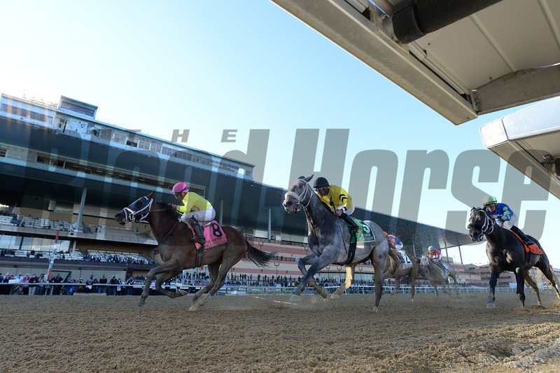 World of Trouble wins the 2019 Carter Handicap at Aqueduct.<br /> Coglianese Photos