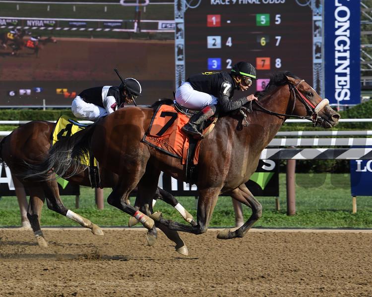 Bon Raison wins the 2019 Tale of the Cat Stakes at Saratoga<br /> Coglianese Photos/Susie Raisher